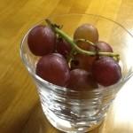 葡萄の季節です