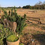 令和はじまりの日に柵作りをしました  by Springveggie